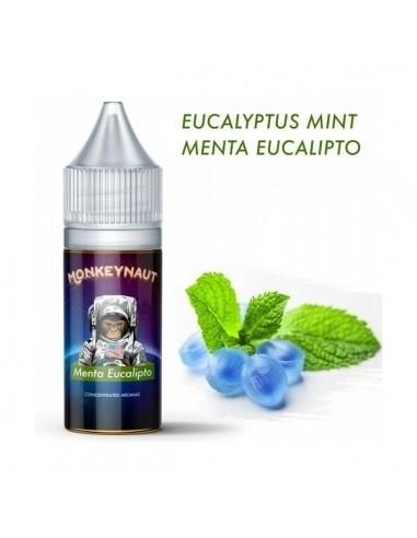 Menta Eucalipto Aroma concentrato